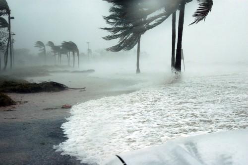 Hurricane Claims